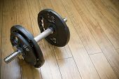Free Freight Dumbells