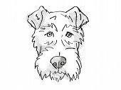 Retro Cartoon Style Drawing Of Head Of A Fox Terrier, A Domestic Dog Or Canine Breed On Isolated Whi poster