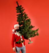 Santa Man Carrying Christmas Tree. Pine Tree. Santa Claus Costume. Christmas, New Year, Holidays. Ch poster