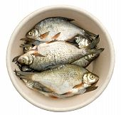 Bream For A Flue-Curing