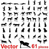 Vector concept or conceptual set,group or collection of black dog silhouette isolated on white background,for animal,domestic,mammal,canine,drawing,cute,playful,hound,play,sketch,humor or breed design
