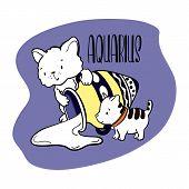 Aquarius Astrological Zodiac Sign With Cute Cat Character. Cat Zodiac Icon. Kitten Aquarius Sticker. poster