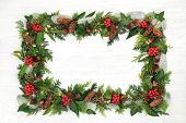 Natural winter and Christmas background border with holly and a variety of flora and fauna on rustic poster