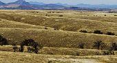 Rolling desert hills
