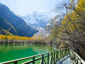 Walkway Along Pearl Lake (zhuoma La Lake) With Snow Mountains And Autumn Leaves In The Background poster