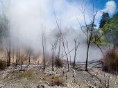 Dampfende vulkanische Thermalquelle in Rotorua, Neuseeland n