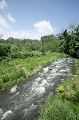 River photo; Bali Island, Indonesia