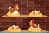 image of laying eggs  - Illustration of two hens laying eggs at the wooden shelves - JPG