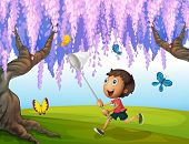 Illustration of a boy catching butterflies at the park