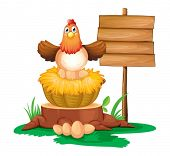Illustration of a hen hatching eggs with a wooden signboard on a white background