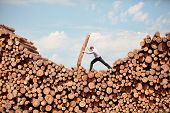 business vision -hardworking  businessman  on top of large pile of cut wooden logs