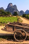 picture of chariot  - Chariot with branches in a limestone valley landscape in South China - JPG
