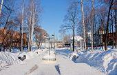 pic of perm  - avenue in a winter park city Perm Russia - JPG