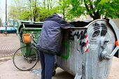 image of dumpster  - A homeless man looking for food in a garbage dumpster - JPG