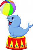 Circus cartoon seal playing a ball
