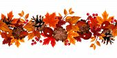 picture of rowan berry  - Vector horizontal seamless background with autumn leaves - JPG