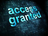 Safety concept: Access Granted on digital background