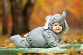 Baby boy dressed in elephant costume