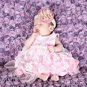 Beautiful Baby Girl Posing for Camera in Studio