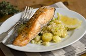 Griddled Salmon