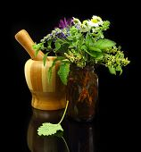 pic of pestle  - Mortar and pestle with fresh herbs and medical bottle - JPG