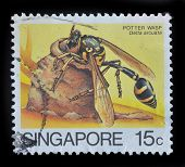 Singapore Postage Stamp Shows Potter Wasp
