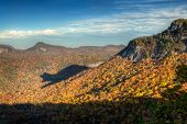 Rare Autumn Bear Shadow In Blue Ridge Mountains