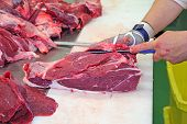 Butcher cutting a fresh beef meat