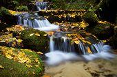 Autumn waterfall, Czech-Saxon Switzerland