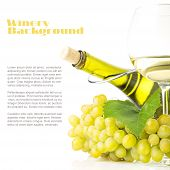 Winery Background. White Grapes With Bottle Of White Wine Isolated On White Background