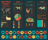 image of husbandry  - Agriculture animal husbandry infographics Vector illustrationstry info graphics - JPG