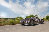 Alfa Romeo  6C 2300 B Mm Spider Touring (1938) Runs In Mille Miglia 2014