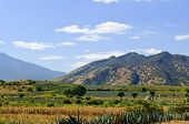 Landscape In Jalisco,  Mexico