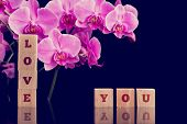 Love You Message With Pink Phalaenopsis Orchids