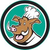 Wild Pig Boar Chef Cook Head Circle Cartoon