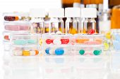 Colorful Medical Capsules In Petri Dishes. Laboratory Concept.