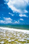 Divine Coastline Windy Holiday