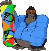 Monkey and Snowboard
