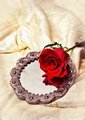 Single red rose on antique mirror