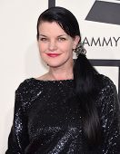 LOS ANGELES - FEB 08:  Pauley Perrette arrives to the Grammy Awards 2015  on February 8, 2015 in Los Angeles, CA