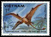 Vintage  Postage Stamp. Rhamphorhynchus.