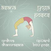 Urdhva Dhanurasana. Upward Bow (wheel) Pose.