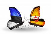 Two Butterflies With Flags On Wings As Symbol Of Relations Estonia And Brunei