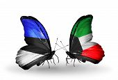 picture of kuwait  - Two butterflies with flags on wings as symbol of relations Estonia and Kuwait - JPG