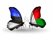 Two Butterflies With Flags On Wings As Symbol Of Relations Estonia And Madagascar