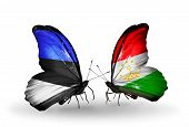 Two Butterflies With Flags On Wings As Symbol Of Relations Estonia And Tajikistan