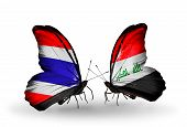 Two Butterflies With Flags On Wings As Symbol Of Relations Thailand And  Iraq