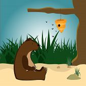 stock photo of beehive  - The bear sits on the sand in front of a beehive - JPG