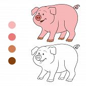 foto of baby pig  - Game for children - JPG