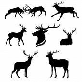 stock photo of animal silhouette  - Deer set of black silhouettes - JPG